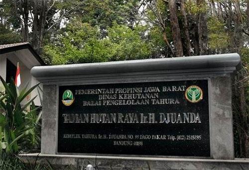 Taman Hutan Raya Ir. H Juanda Bandung