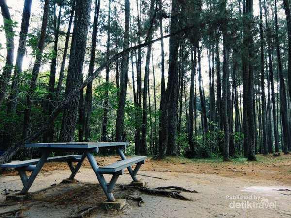 Taman Hutan Raya Ir H Juanda Bandung