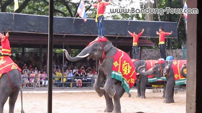 Promo Tour Wisata Bangkok Pattaya 2018 4D3N