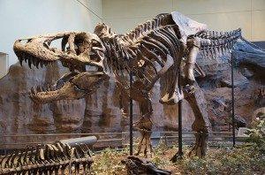 Museum-Geologi-Bandung