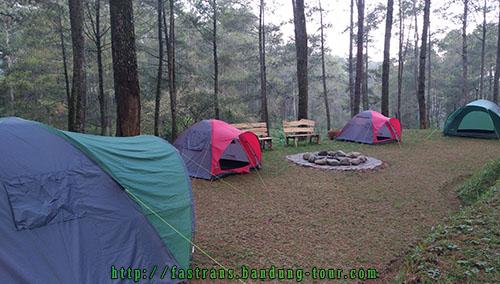 berkemah-di-Orchid-Forest-Bandung