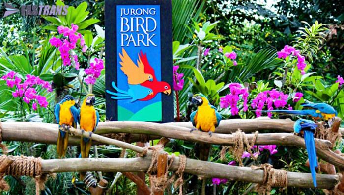 Jurong Bird Park (Taman Burung Jurong)